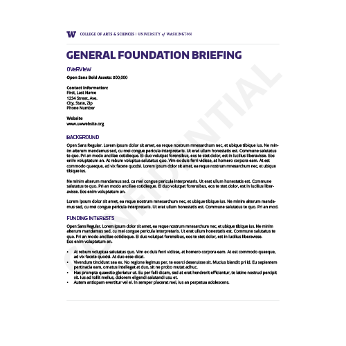 Preview of General Foundation Brief Template A (Confidential)
